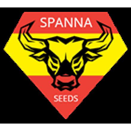 Spanna Seeds