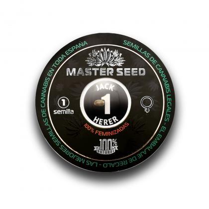 Jack Herer fem (Master-Seed)